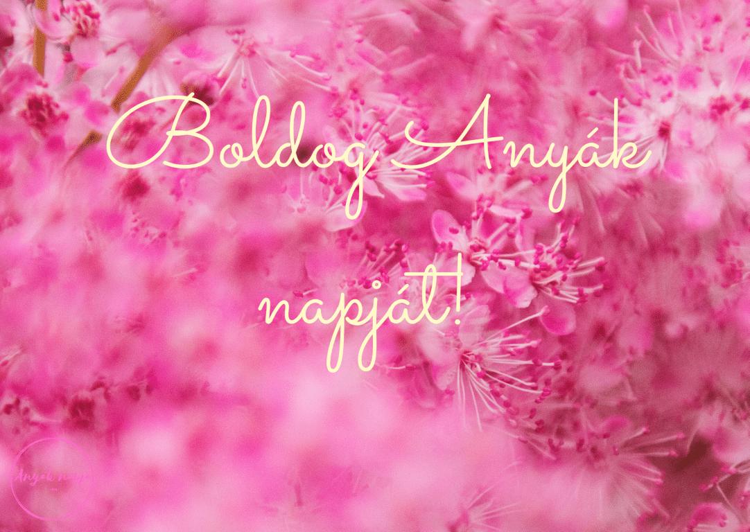Boldog Anyák napját! - Anyák napi képek, képeslapok 14