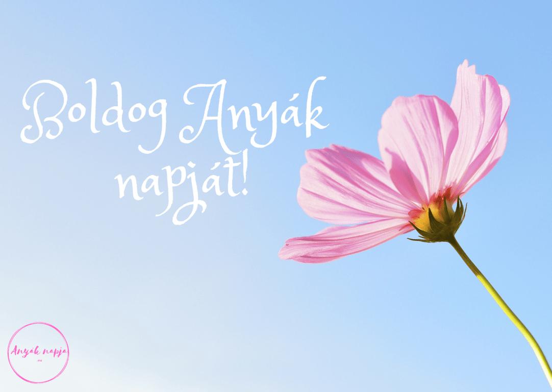 Boldog Anyák napját! - Anyák napi képek, képeslapok 9